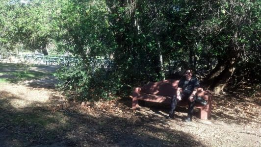 Friend Howlie sitting on a park bench at Group Area 3