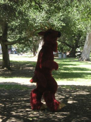 Fursuit McCarty walking beneath the trees