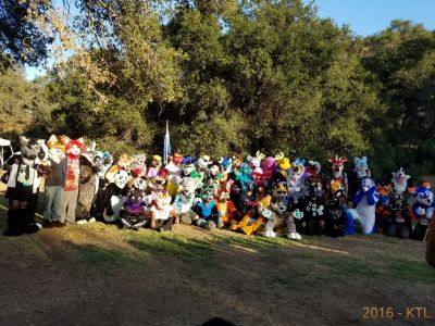 Candid photo as the photographers arranged fursuits into the shot