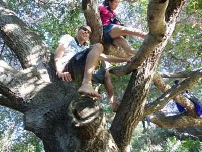Furries in the Trees 1