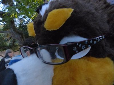 Glasses Perched Upon Fursuiter
