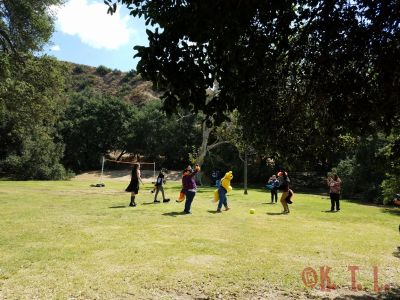 Furries and fans playing kickball in the field