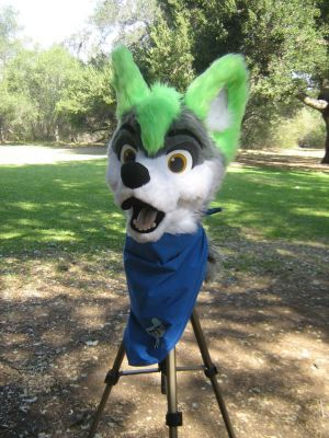 Fursuit head on tripod