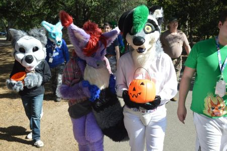 fursuiter biting its tail while walking photo courtesy PonyQuest