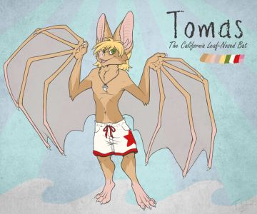 Tomas the Leaf-Nosed Bat, artwork by Teskine