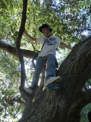 Treeclimbing Lostwolf321
