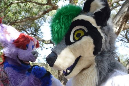 Smiling fursuiter Clockwork Coon photo by PonyQuest