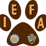 Brown paw logo for the IEFA