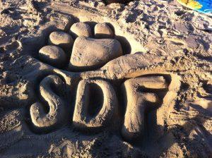 Beach art logo for the San Diego Furries