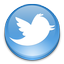 Twitter icon for social links to the subregion groups