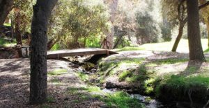 View of the bridge within the Felicita Park in Escondido