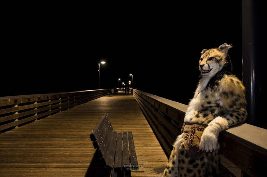 Ventura Pier Fursuit Photoshoot @ Ventura Pier | Ventura | California | United States