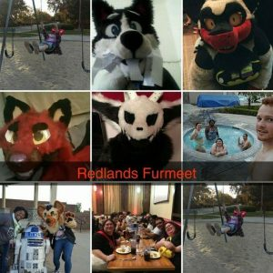 Collage of 9 images from various Redlands Furmeets.