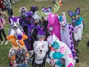 Overhead shot of fursuited participants enjoying the SoCal FurBQ. Photo courtesy of Ryker Husky.