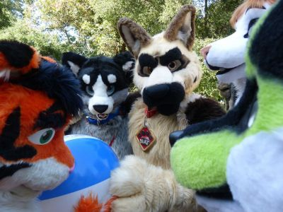 All The Fursuiters