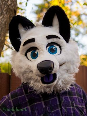 Fursuiter with happy face looking at the camera