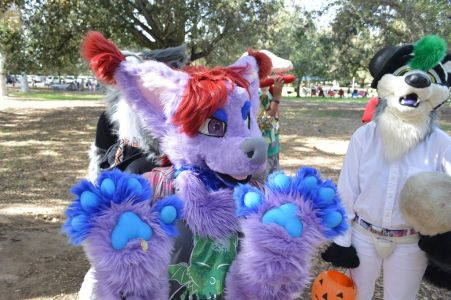 Fursuit showing purple and blue paws to the cameraman photo courtesy Pony Quest