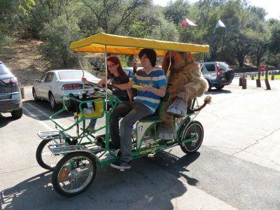 Park Transport