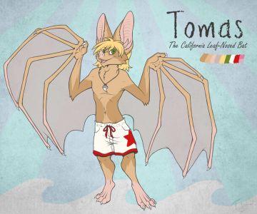 Tomas the Leaf-Nosed Bat, artwork by Teskine